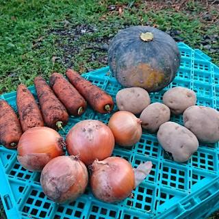 無農薬 野菜セット 4種類