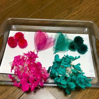 ハーバリウム花材セット(ドライフラワー)