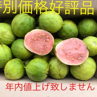 グァバ特別特価好評品1キロ   1800円(フルーツ)