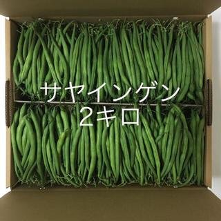 鹿児島産サヤインゲン2キロ^_^(野菜)