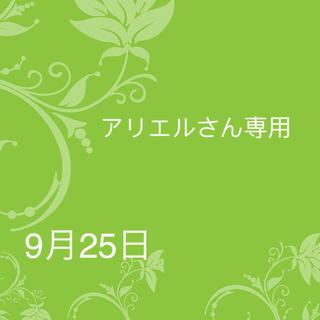 アリエルさん 9月25日 前髪カット 三つ編み太め リボン無し(前髪ウィッグ)