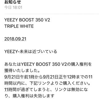 adidas - yeezy boost 350 v2