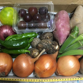 淡路島【 きまぐれ 】ミニ野菜set