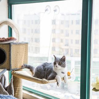 YUUMA 猫窓 ハンモックベッド