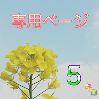 【いちご様専用】愛媛県産あきたこまち100%  新米5kg  農家直送(米/穀物)