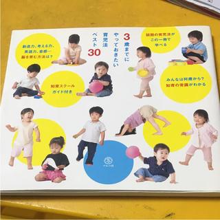 076 3歳までにやっておきたい育児法ベスト30(子育て 乳児 早期教育 七田)