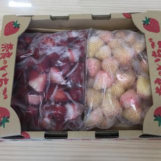 高級苺 古都華 白苺 淡雪(ピンク) 1kg  冷凍(フルーツ)
