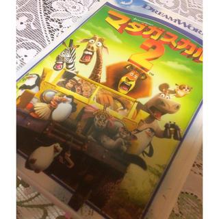 ディズニー(Disney)のマダガスカル2 DVD(キッズ/ファミリー)