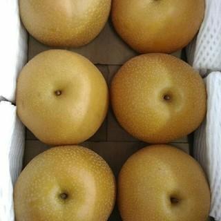 ✨!新高梨6玉入約2.5kg(^_^)/✨福岡県産水分と歯ごたえが最高なんです!