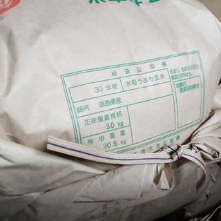 新米 キヌヒカリ 玄米 28kg