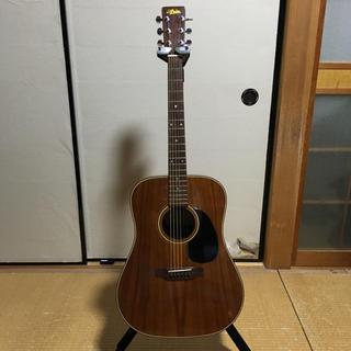 アリアカンパニー(AriaCompany)の70s'Aria  W-30K acoustic guitar(アコースティックギター)
