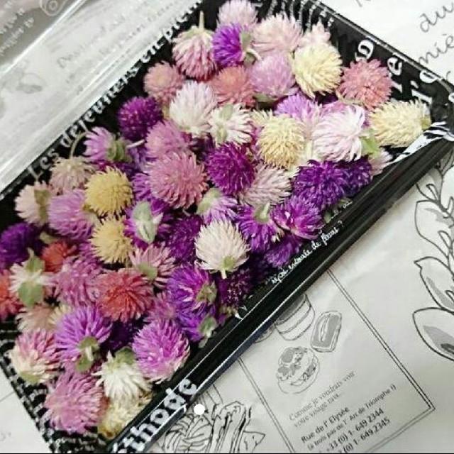 再販♥️︎ドライフラワー♡千日紅 100個 詰め合わせ 花材 ハンドメイド ハンドメイドのフラワー/ガーデン(ドライフラワー)の商品写真