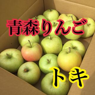 りんご 家庭用 トキ 青森りんご