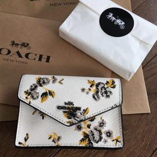 COACH - コーチ 新品 キーケース&カードケース&コインケース