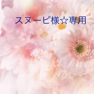 スヌーピさま☆専用です✨(ドライフラワー)