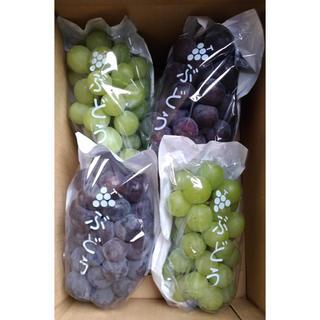 信州葡萄詰合せ 巨峰 黄甘 ピオーネ 種無し 2kg(4房)  ブドウ ぶどう
