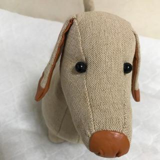 genten - ゲンテン 犬