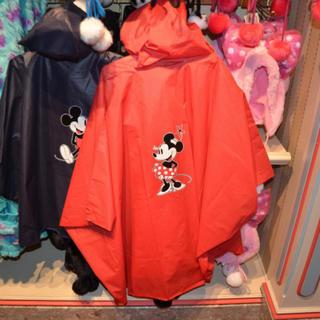 ディズニー(Disney)のレインコート(レインコート)