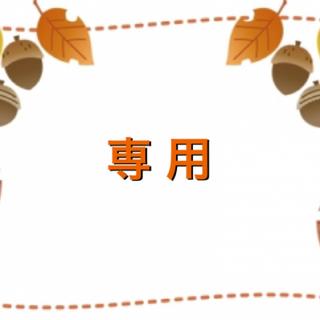 mikihouse - ミキハウス ダブルB プチベア スニーカー 14.5
