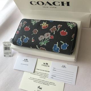 COACH - COACH 新品未使用 長財布 (ディジー花柄)
