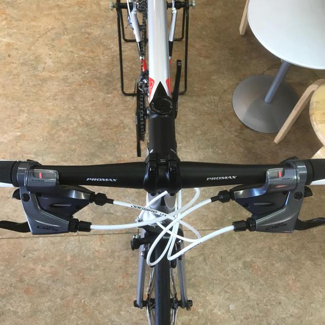 2019 ウィリエール アゾーロ Lサイズ フラットロード完成車 2×8速 スポーツ/アウトドアの自転車(自転車本体)の商品写真