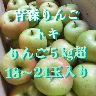 青森県産りんご トキ 5㎏ クーポン利用可能
