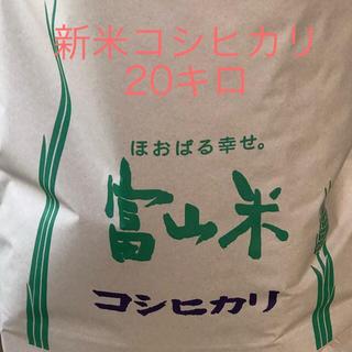 30年新米コシヒカリ20キロ玄米