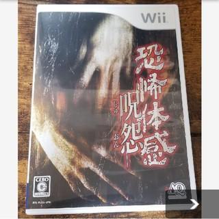 ウィー(Wii)の恐怖体感 呪怨 美品(家庭用ゲームソフト)