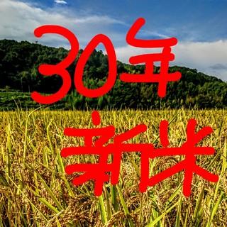 30年新米 低農薬玄米20キロ 山田錦の里より農家直送(米/穀物)
