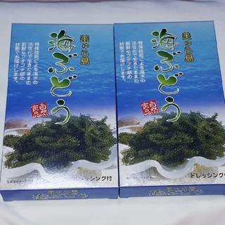 ❤沖縄限定❤海ぶどう❤2箱セット❤(その他)