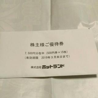 ホットランド株主優待券(7,500円分)(フード/ドリンク券)