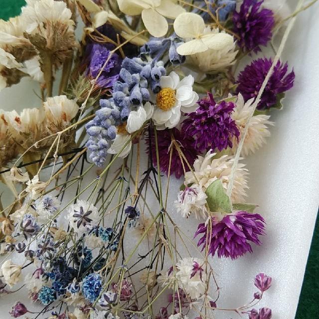 花材33 紫系 かすみ草増量 レジン封入に最適な小花のセット ハンドメイドのフラワー/ガーデン(ドライフラワー)の商品写真