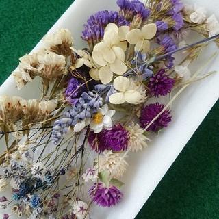 花材33 紫系 かすみ草増量 レジン封入に最適な小花のセット(ドライフラワー)