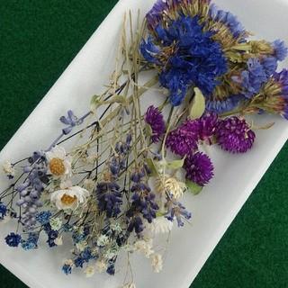 花材36 ブルー系 かすみ草増量 レジン封入に最適な小花のセット(ドライフラワー)