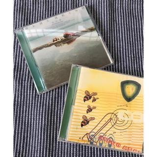 新居昭乃✳︎空の庭 & 鉱石ラジオ  2枚セット(ポップス/ロック(邦楽))