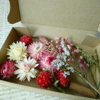 ドライフラワーの花材セット シックピンク系(ドライフラワー)