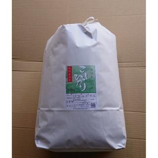 新米✨ 新潟コシヒカリ精米10kg (米/穀物)