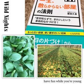 チンゲン菜&本セット(野菜)
