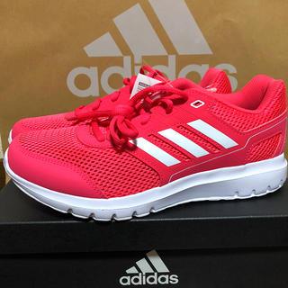 アディダス(adidas)の【新品】アディダス ランニング シューズ 24cm(シューズ)