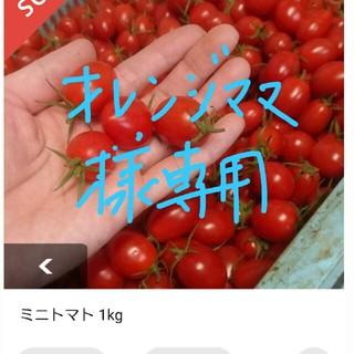 ★オレンジママ様専用★ミニトマト(野菜)
