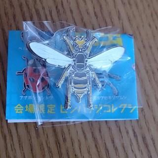 昆虫展 国立科学博物館 モンスズメバチ 限定ピンバッジ NHK 教育テレビ(バッジ/ピンバッジ)