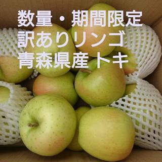 【期間限定・訳ありリンゴ】青森県産 トキ