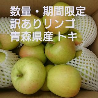 【期間限定・訳ありリンゴ】青森県産リンゴ トキ