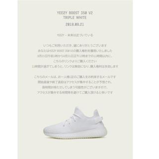 アディダス(adidas)のadidas originals YEEZY BOOST 350 (スニーカー)