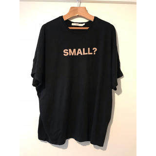 エフィレボル(.efiLevol)のefiLevol SMALL? Tシャツ BIG-Tエフィレボル (Tシャツ/カットソー(半袖/袖なし))