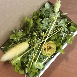3 グリーン クリスマス花材 アソートボックス(プリザーブドフラワー)