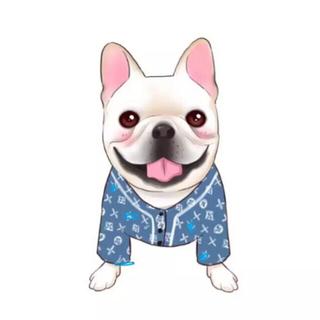犬服ペット服 ビッグロゴパーカー(犬)
