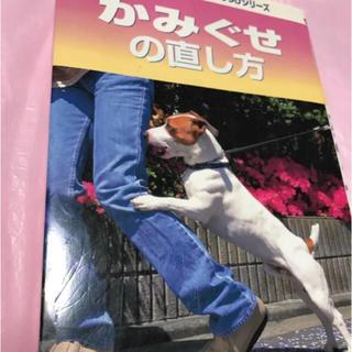 2000/愛犬のためのしつけシリーズ‼︎ かみぐせの直し方(犬)
