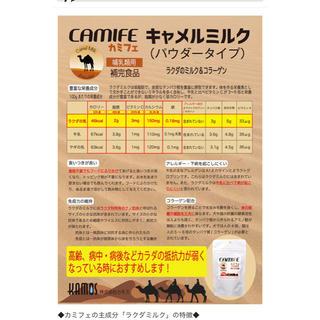 哺乳類用 粉ミルク 大容量(猫)