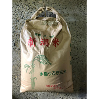 ☆新米☆ H30新潟県産コシヒカリ 10キロ精米済(米/穀物)